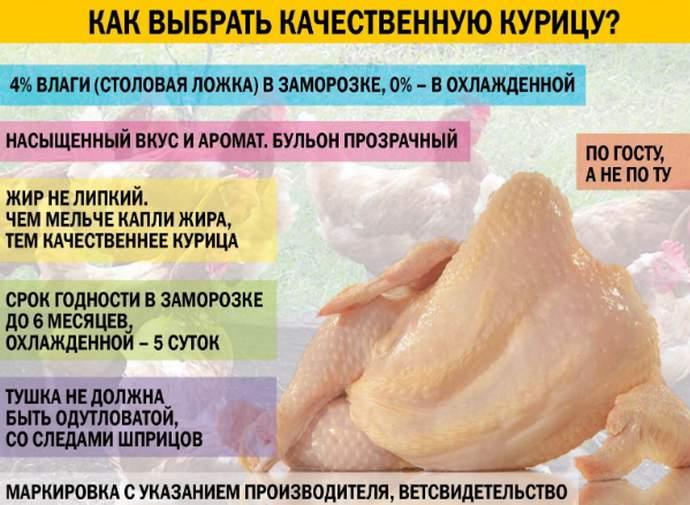 выбор курицы