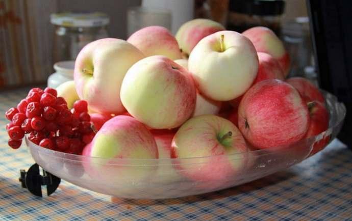 яблоки для приготовления компота Мохито